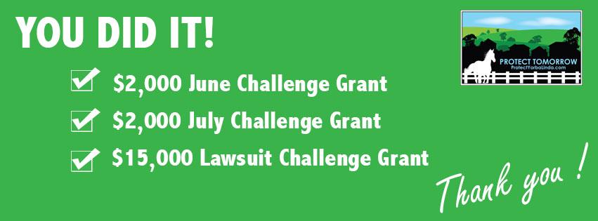 challenge-grants